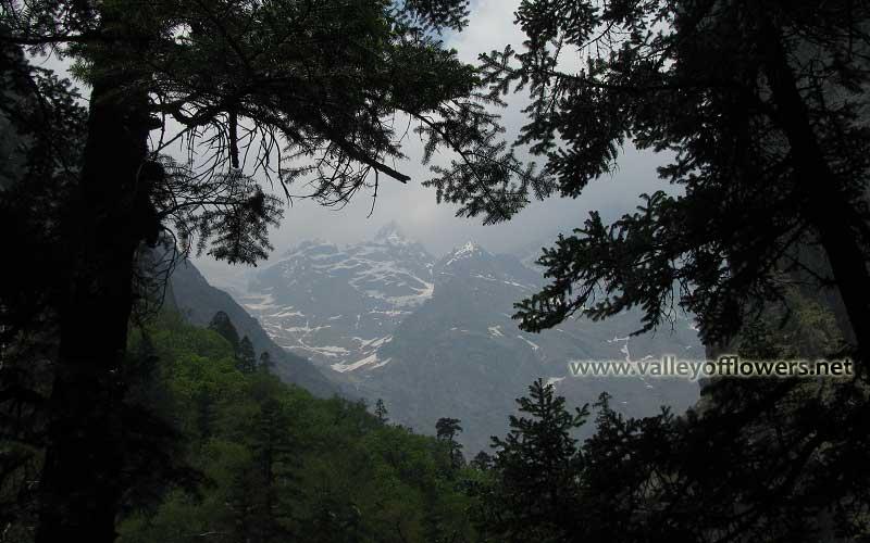 Valley of Flower peaks as seen in the month of June.